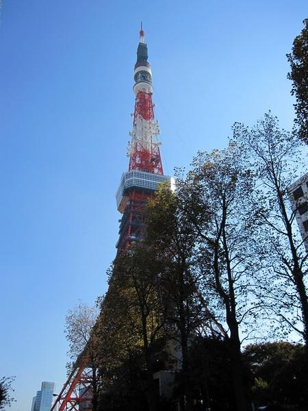 東京タワー20131116.jpg