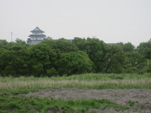 遠くの関宿城.jpg